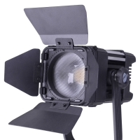 Ledgo LG-D300C bi-color Fresnel Studio Light