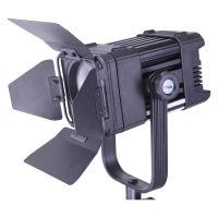 Ledgo LG-D300 LED Fresnel Studio Light